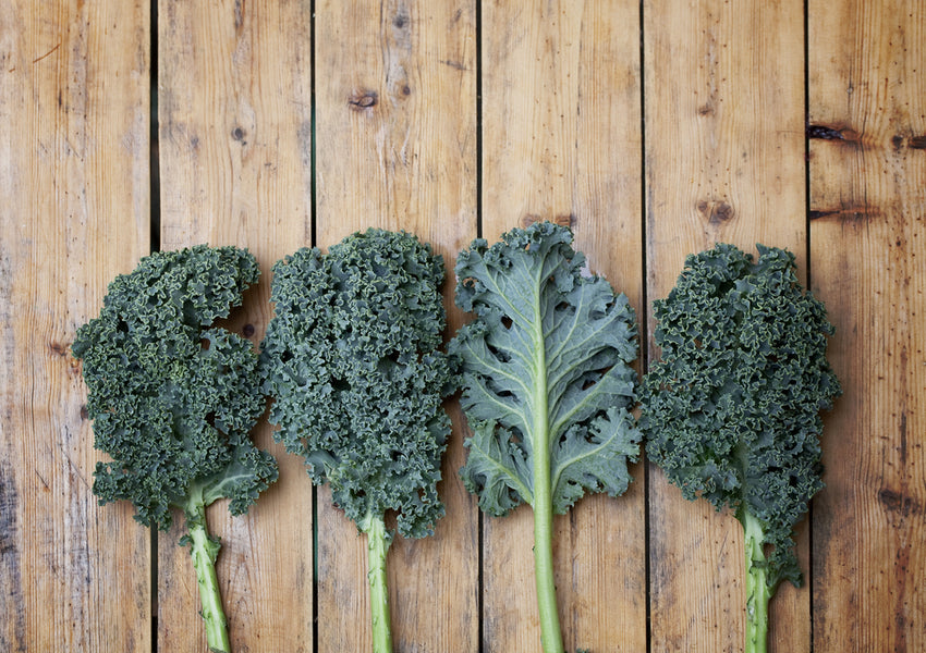Top 5 Health Benefits of Kale!
