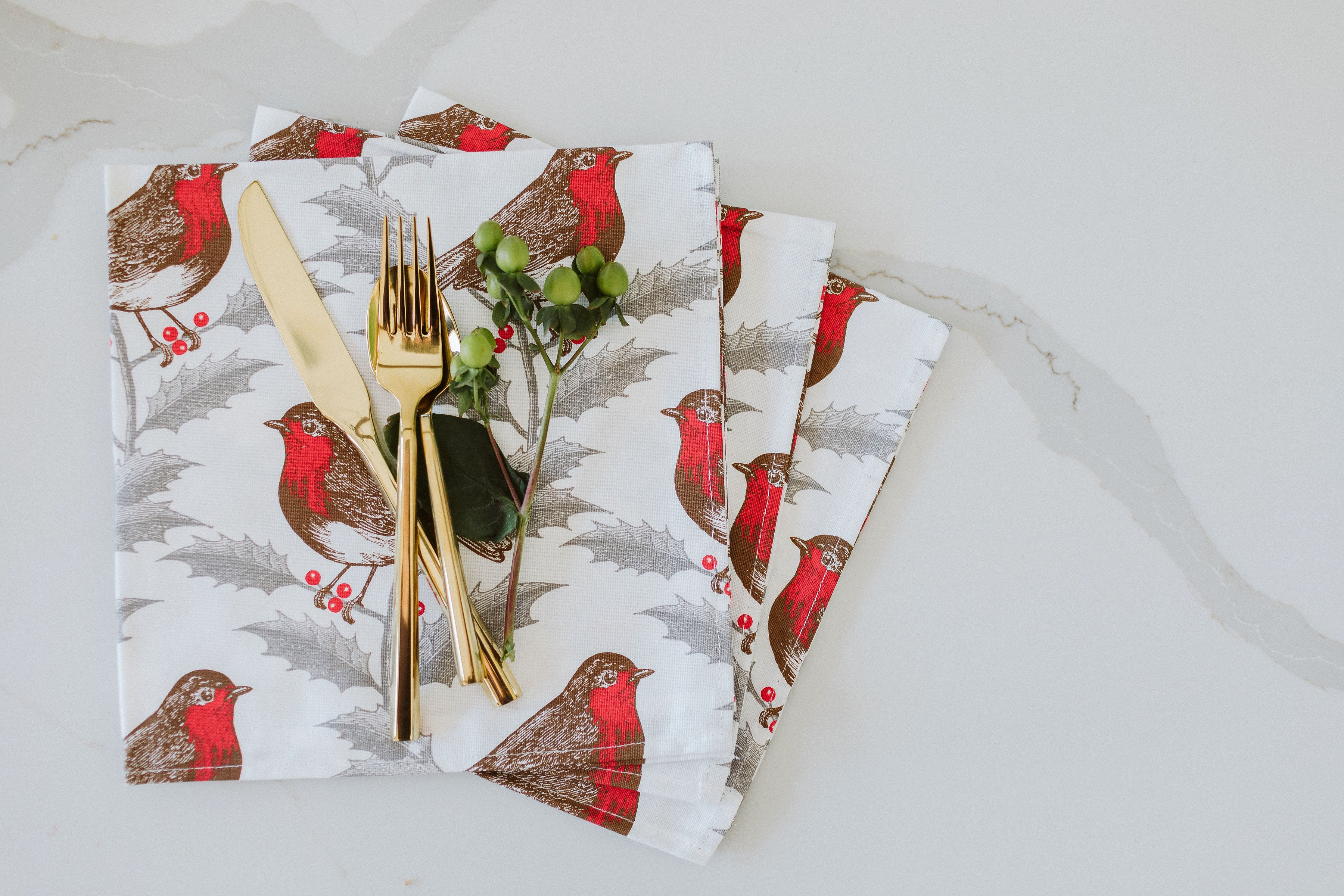 Thornback & Peel Red Robin Napkins, set of four