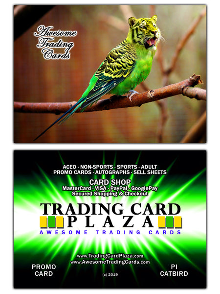 New Promo Card - THE CATBIRD - P1 - TradingCardPlaza.com / AwesomeTradingCards.com