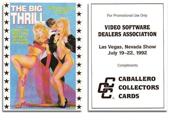 Caballero Collector Cards - Video Software Dealers  Association -  Promo Card - Nina Hartley