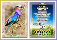 Load image into Gallery viewer, Awesome Trading Cards - Birds - 3 Card Promo Set