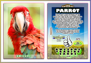 Awesome Trading Cards - Birds - 3 Card Promo Set