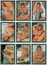 Load image into Gallery viewer, Lasting Images - Becky Sunshine - UnPublished Edition - Set 2 - 9 Card Set