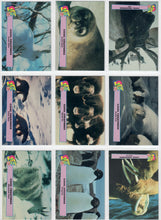 Load image into Gallery viewer, Club Pro Set -Cool Creatures - 9 Card Promo Set