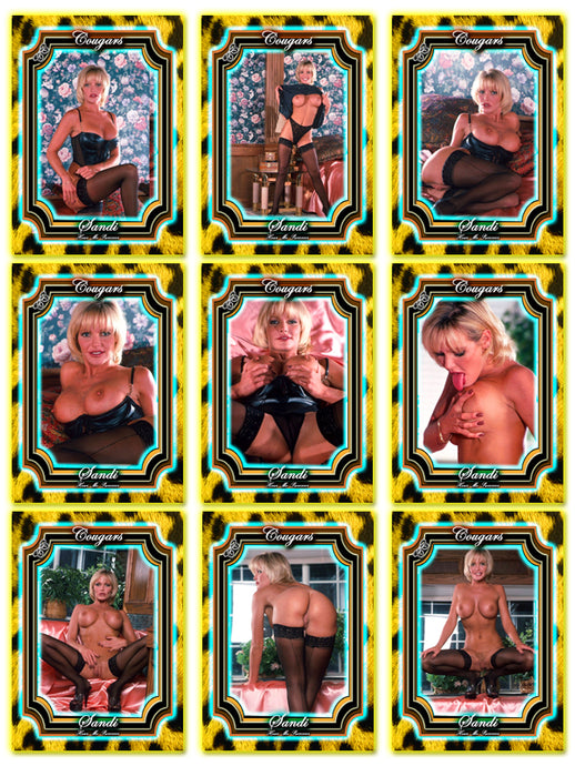 Climax Cards - COUGARS - 9 Card Set - SANDI MOORE
