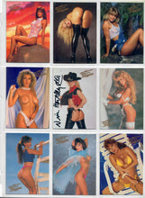 Load image into Gallery viewer, Video Vixens - Series 1  - Complete 48 Card Base Set - Decisive Marketing w/ Nina Hartley Autographed Card