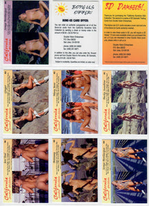 Double Vision - California Sunshine Girls - Gold Foil & Hand Numbered - 3D Card Set - Includes Viewer & Bonus Card