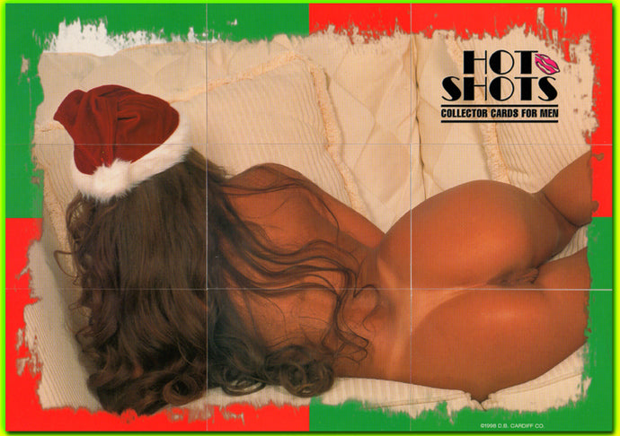 Hot Shots - Felecia - Special Christmas Puzzle - Complete 9 Card Set