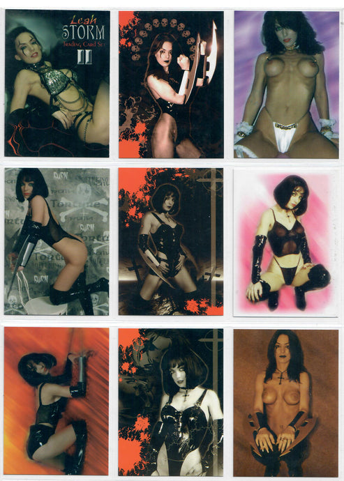 Leah Storn II - Trading Card Set - EH! Productions - Everette Hartsoe - 18 Card Puzzle Back Set