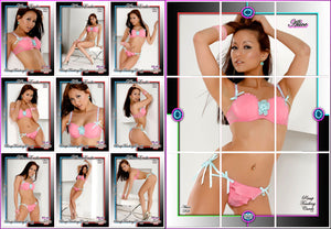 Pinup Trading Cards - 9 Card Puzzle Set - ALICE ENIKO