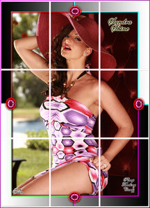Pinup Trading Cards - 9 Card Puzzle Set - SANDRA SHINE