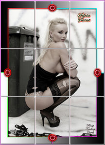 Pinup Trading Cards - 9 Card Puzzle Set - SILVIA SAINT