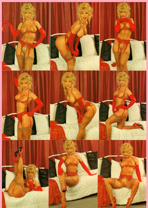 Silver Star - Wild Palms - Legends of Erotica - Nina Hartley - Complete 27 Card Base Set Autographed/Numbered