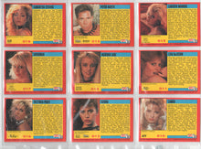 Load image into Gallery viewer, SuperStars of Porn - Knight Publishing - Complete 18 Card Set - Series 1