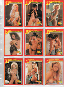 SuperStars of Porn - Knight Publishing - Complete 18 Card Set - Series 1