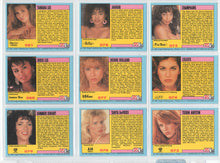 Load image into Gallery viewer, SuperStars of Porn - Knight Publishing - Complete 18 Card Set - Series 5