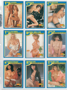 SuperStars of Porn - Knight Publishing - Complete 18 Card Set - Series 5