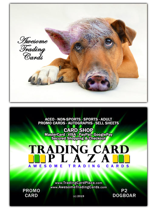 Trading Card Plaza - Awesome Trading Cards - Promo Card - P2 DogBoar