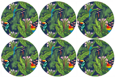 Birds in Paradise Coasters