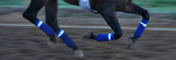Close up of a galloping horses legs during training