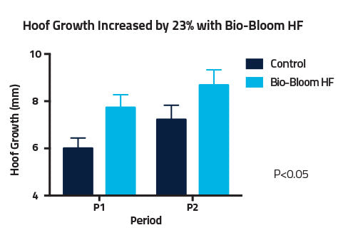 Graph showing hoof growth increased by 23% with Bio-Bloom HF