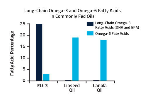 Graph showing the amount of long-chain fatty acids in common omega-e sources
