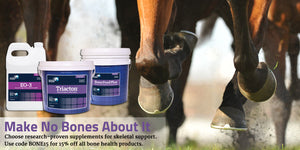 Choose research-proven supplements for skeletal support. Use code BONE15 for 15% off all bone health products.