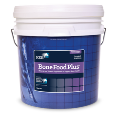 Bone Food Plus Product Image