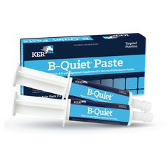 B-Quiet Paste Product Image