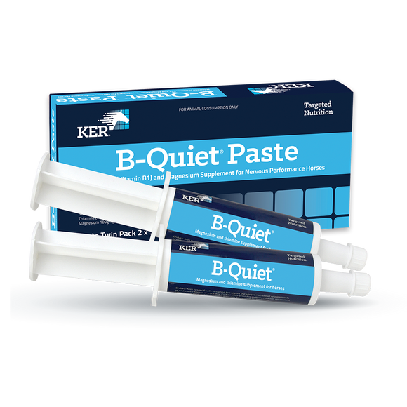 B-Quiet® Paste - Twin Pack