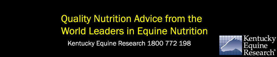 Equine Nutrition Supplements