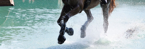 Close-up of a horse's legs galloping through the water on a cross-country course.