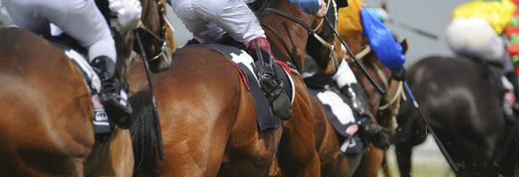 Picture of racehorses galloping from behind