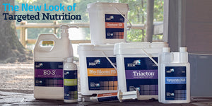 The New Look of Targeted Nutrition