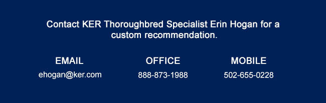 Contact KER Thoroughbred Specialist Erin Hogan for a custom recommendation. 888-873-1988