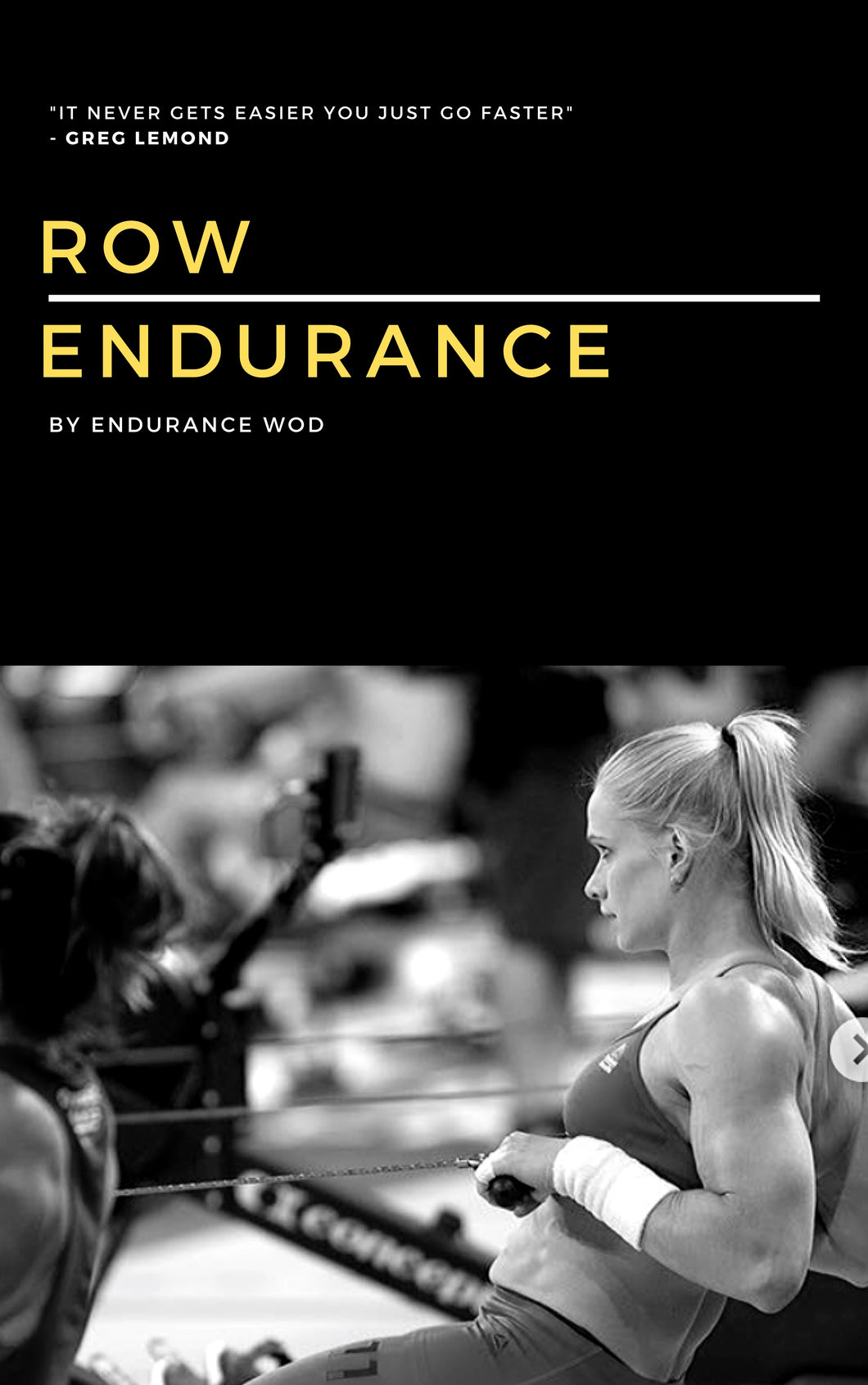 Row Erg Endurance Program