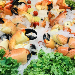 Medium Stone Crabs  (1 lb.) (Season Begins Oct. 15th)
