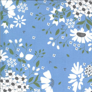 Daisys on Blue