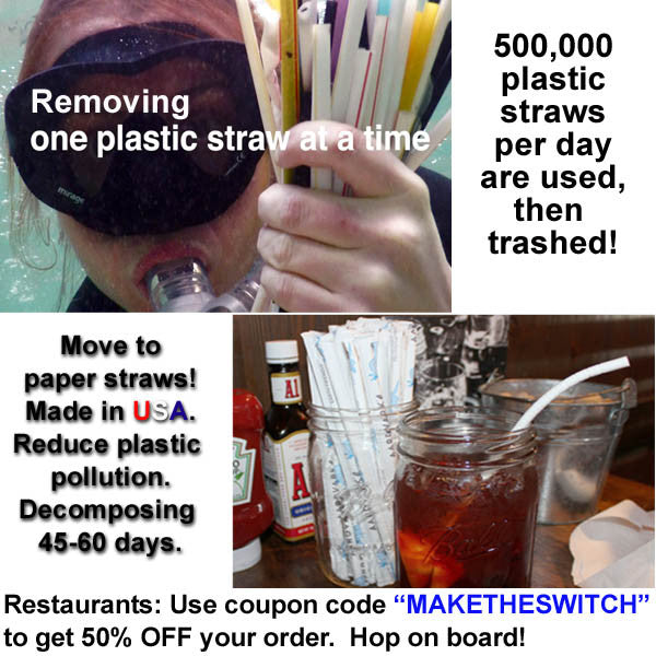 Plastic Straws in our Oceans.  Make The Switch to Paper Straws.