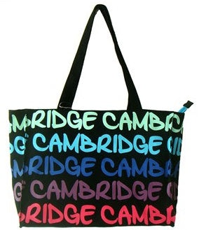 Rainbow Cambridge Handbag
