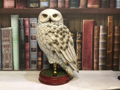 Hedwig Collector's Statue