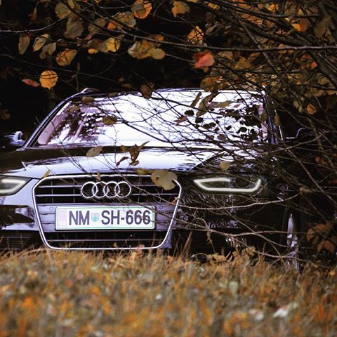 Don_t Leave Your Audi Exposed To The Elements