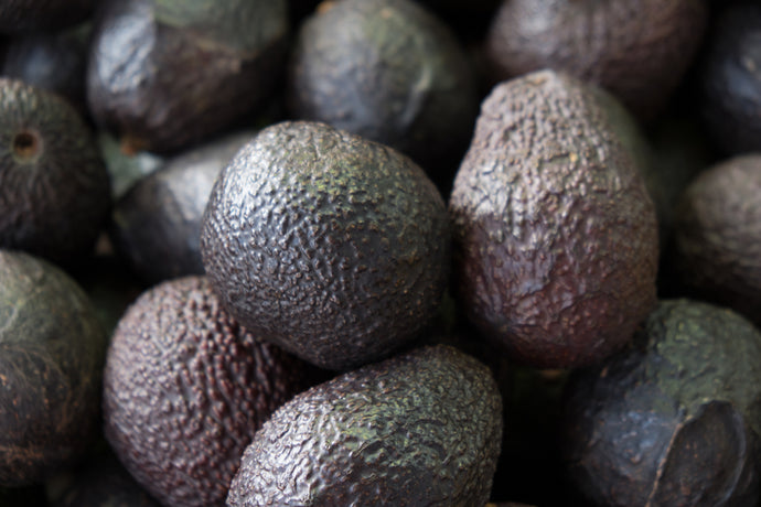 Avocado Great Skin Care