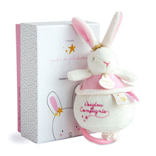 Load image into Gallery viewer, Star Pink Bunny Plush Animal Music Box