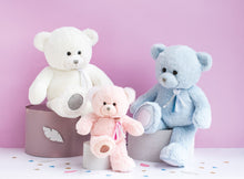 Load image into Gallery viewer, Histoire D'ours Teddy Bear Charms Pink