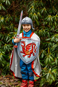Liontouch Pretend-Play Dress Up Costume Amber Dragon Knight Shield