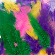 brightly coloured craft feathers