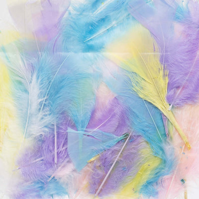 pastel-coloured craft feathers