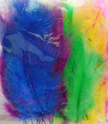Coloured Feathers