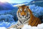 2019 Tigre Et Montagne Neigeuse En Hiver - 5D Kit Broderie Diamants/Diamond Painting VM3598